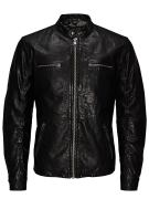 Jack & Jones Regular-Fit-Biker- Lederjacke